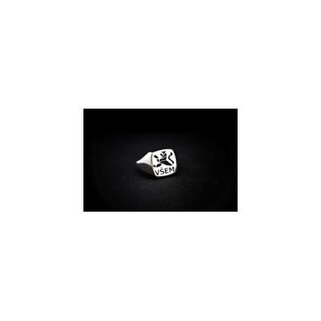 0.13 Absolventský prsten