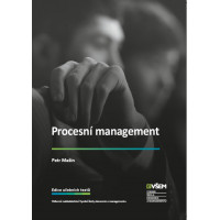 Procesní management